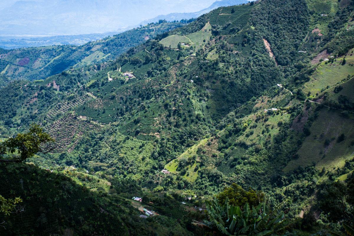 Pan America Mini – Part 2 Medellin-35